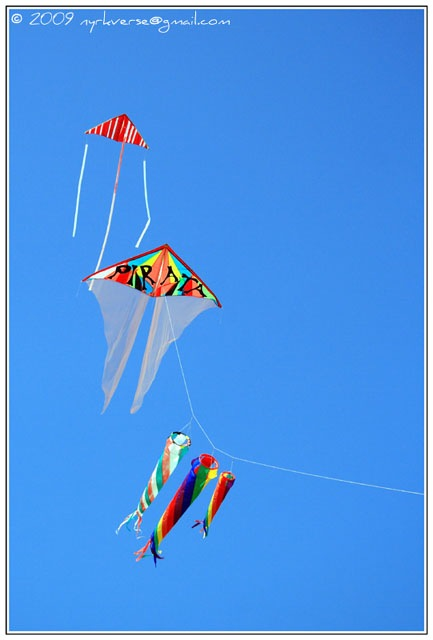 kites11